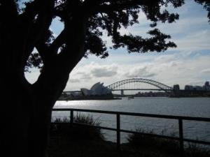 Opera House and Bridge from Botanical Gardens